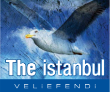 THE İSTANBUL VELİEFENDİ
